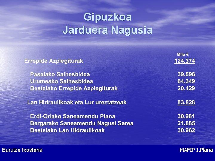 Gipuzkoa Jarduera Nagusia Burutze txostena Informe de Ejecución MAFIP I. Plana Plan MAFIP I