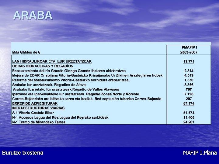 ARABA Burutze txostena MAFIP I. Plana
