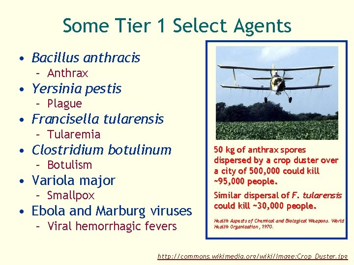 Some Tier 1 Select Agents • Bacillus anthracis – Anthrax • Yersinia pestis –