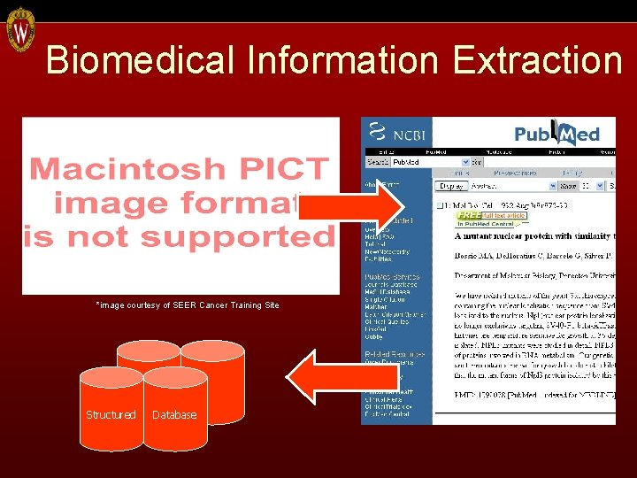 Biomedical Information Extraction *image courtesy of SEER Cancer Training Site Structured Database