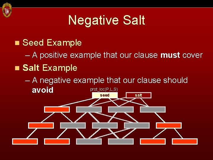 Negative Salt n Seed Example – A positive example that our clause must cover