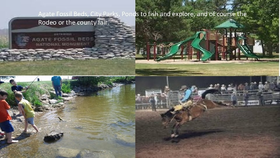 Agate Fossil Beds, City Parks, Ponds to fish and explore, and of course the