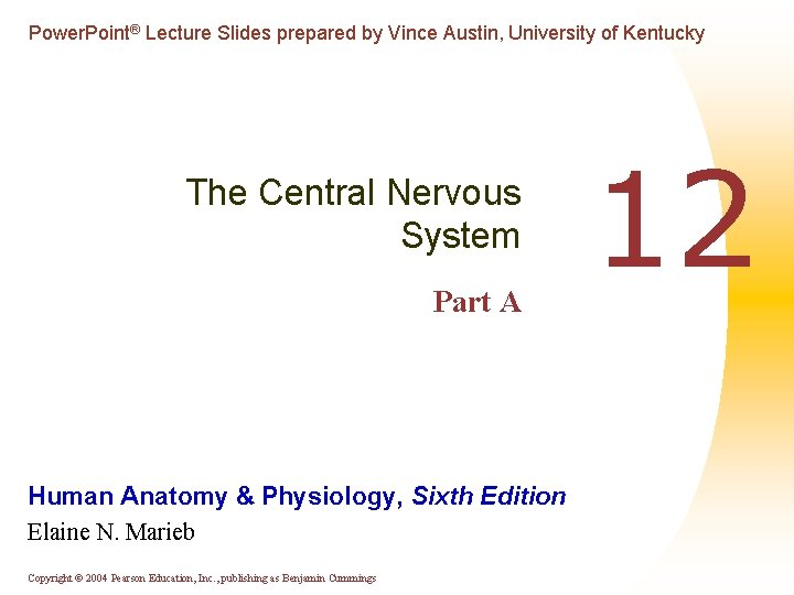Power. Point® Lecture Slides prepared by Vince Austin, University of Kentucky The Central Nervous