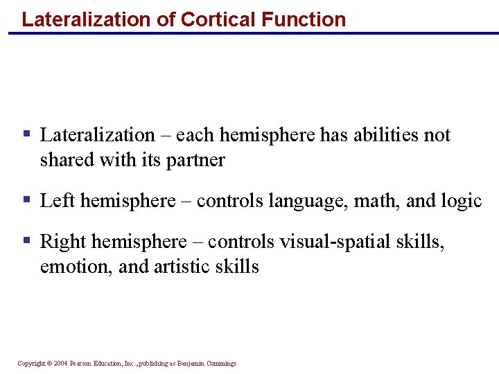 Lateralization of Cortical Function § Lateralization – each hemisphere has abilities not shared with