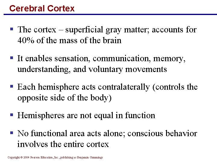 Cerebral Cortex § The cortex – superficial gray matter; accounts for 40% of the