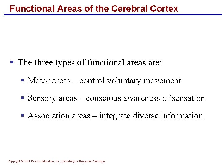 Functional Areas of the Cerebral Cortex § The three types of functional areas are: