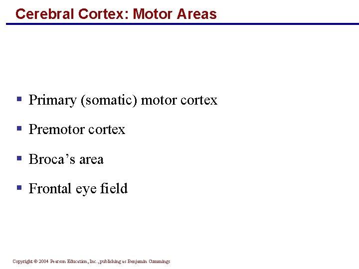 Cerebral Cortex: Motor Areas § Primary (somatic) motor cortex § Premotor cortex § Broca's