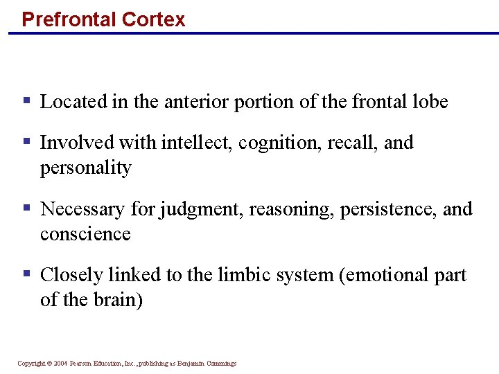 Prefrontal Cortex § Located in the anterior portion of the frontal lobe § Involved