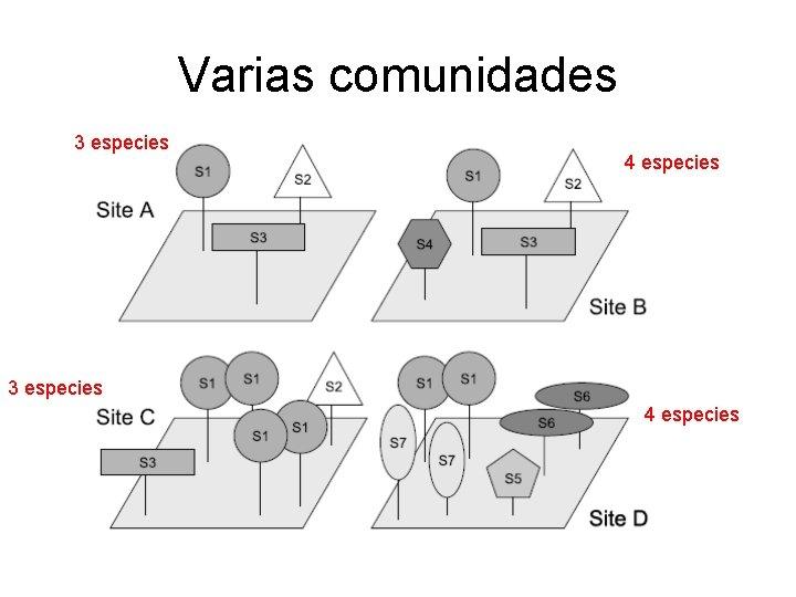 Varias comunidades 3 especies 4 especies