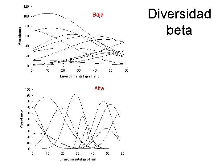 Baja Alta Diversidad beta