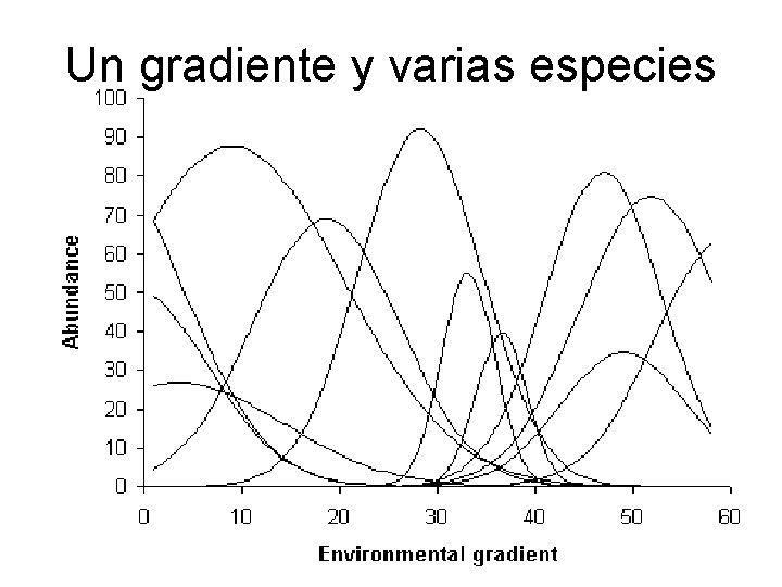 Un gradiente y varias especies