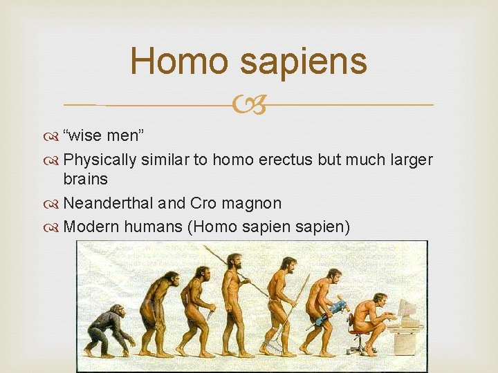"Homo sapiens ""wise men"" Physically similar to homo erectus but much larger brains Neanderthal"