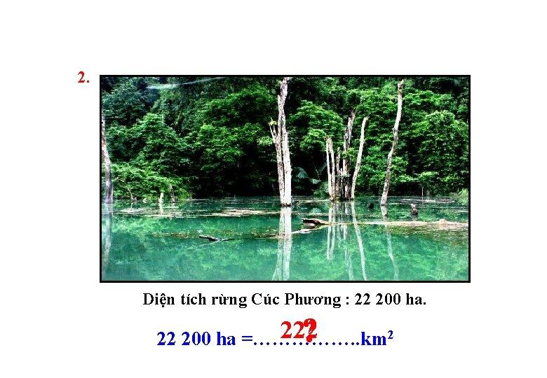 2. Diện tích rừng Cúc Phương : 22 200 ha. ? 222 200 ha