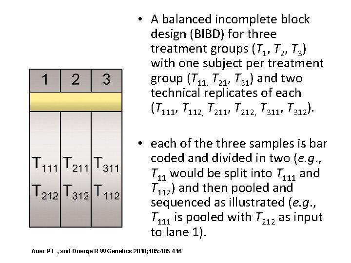 • A balanced incomplete block design (BIBD) for three treatment groups (T 1,