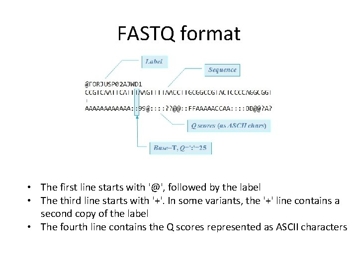 FASTQ format • The first line starts with '@', followed by the label •