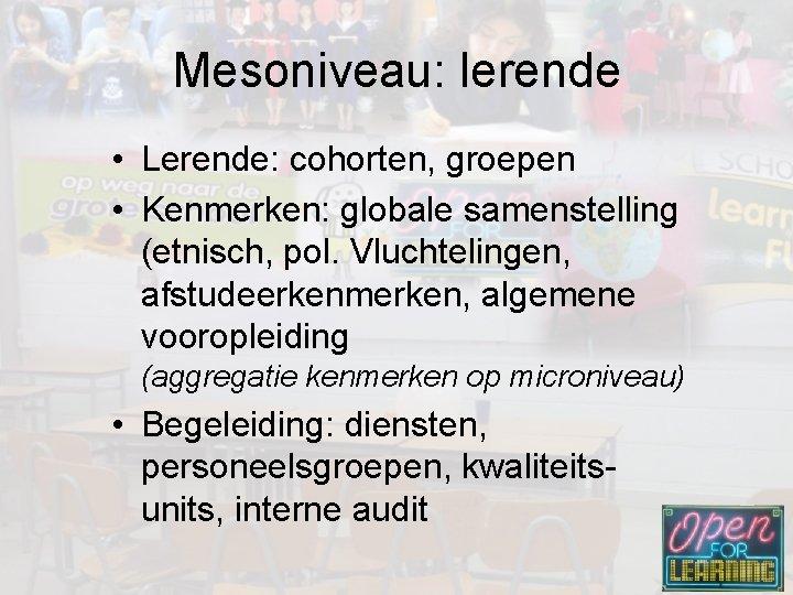 Mesoniveau: lerende • Lerende: cohorten, groepen • Kenmerken: globale samenstelling (etnisch, pol. Vluchtelingen, afstudeerkenmerken,