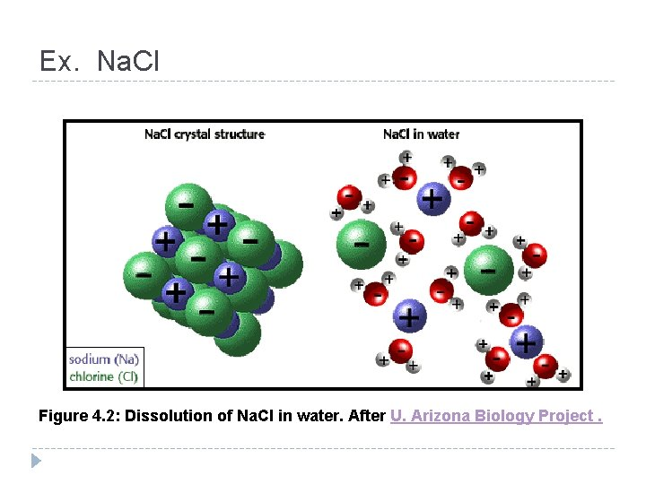 Ex. Na. Cl Figure 4. 2: Dissolution of Na. Cl in water. After U.