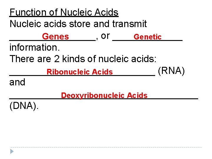 Function of Nucleic Acids Nucleic acids store and transmit ________, or _______ Genetic Genes