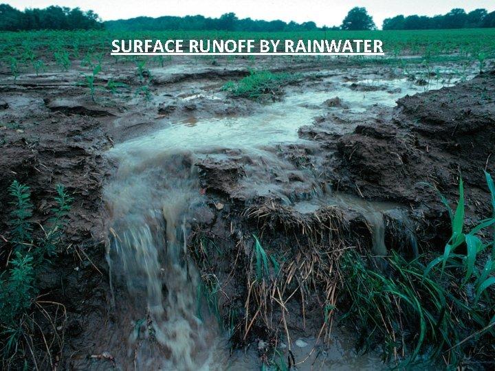 SURFACE RUNOFF BY RAINWATER