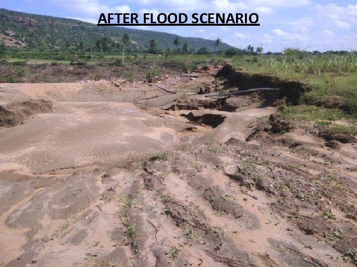 AFTER FLOOD SCENARIO