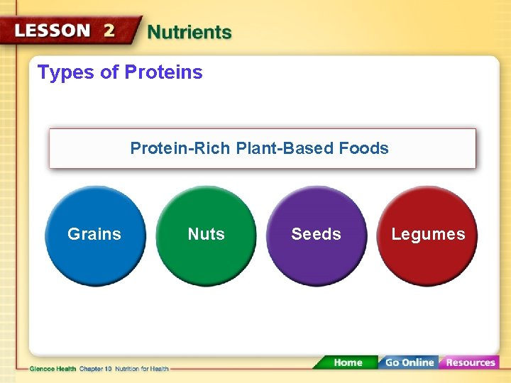 Types of Proteins Protein-Rich Plant-Based Foods Grains Nuts Seeds Legumes