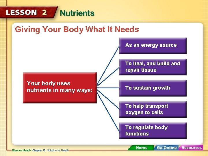 Giving Your Body What It Needs As an energy source To heal, and build