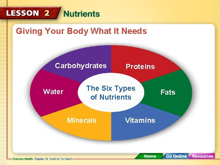 Giving Your Body What It Needs Carbohydrates Water Proteins The Six Types of Nutrients