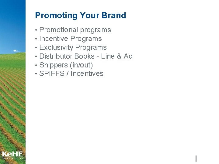Promoting Your Brand • Promotional programs • Incentive Programs • Exclusivity Programs • Distributor