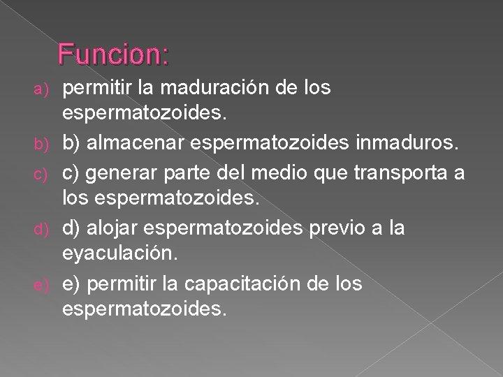 Funcion: a) b) c) d) e) permitir la maduración de los espermatozoides. b) almacenar