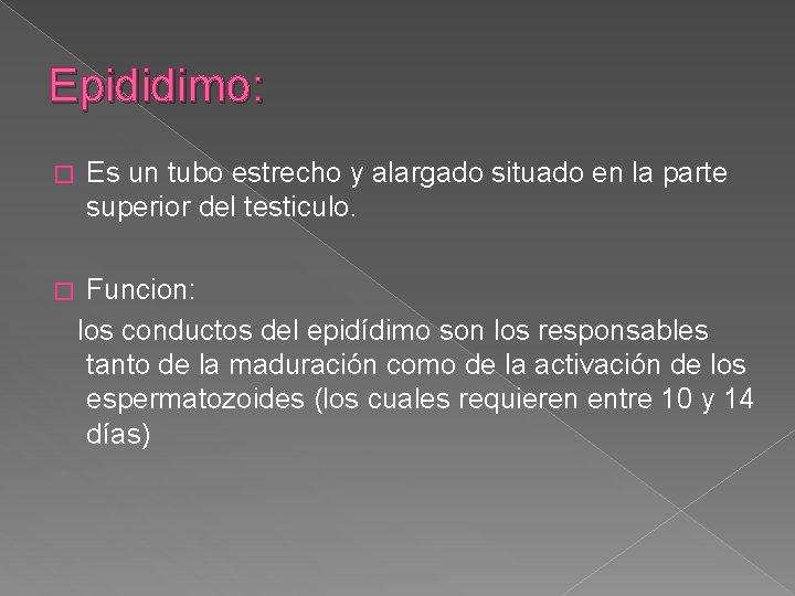 Epididimo: � Es un tubo estrecho y alargado situado en la parte superior del