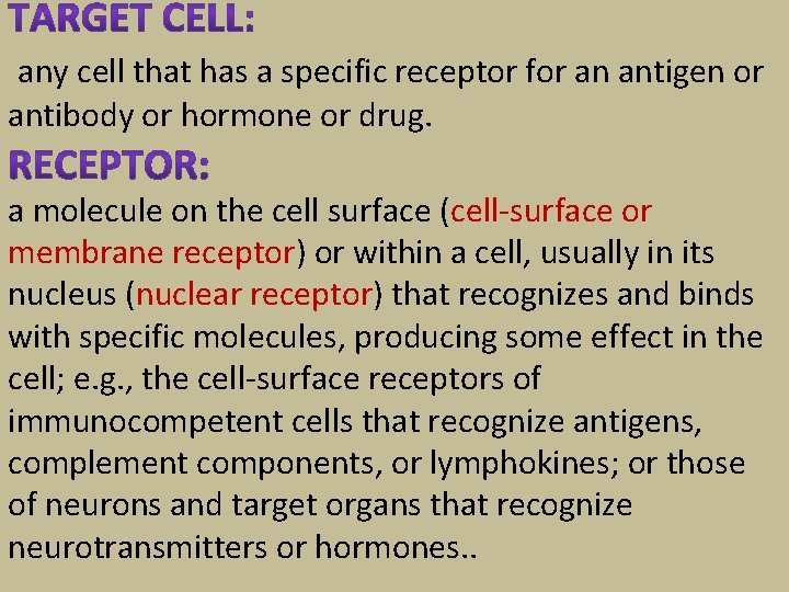 any cell that has a specific receptor for an antigen or antibody or