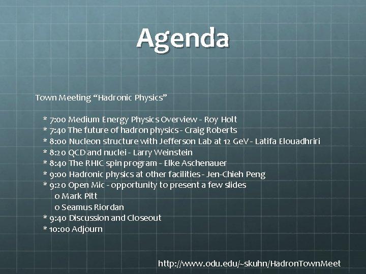 "Agenda Town Meeting ""Hadronic Physics"" * 7: 00 Medium Energy Physics Overview - Roy"