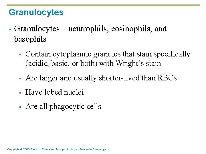 Granulocytes § Granulocytes – neutrophils, eosinophils, and basophils § Contain cytoplasmic granules that stain