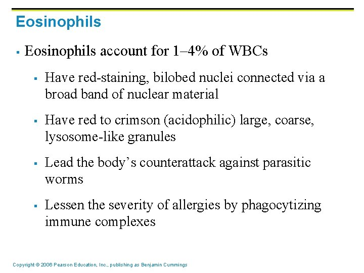Eosinophils § Eosinophils account for 1– 4% of WBCs § § Have red-staining, bilobed