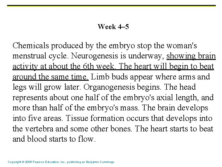 Week 4– 5 Chemicals produced by the embryo stop the woman's menstrual cycle. Neurogenesis
