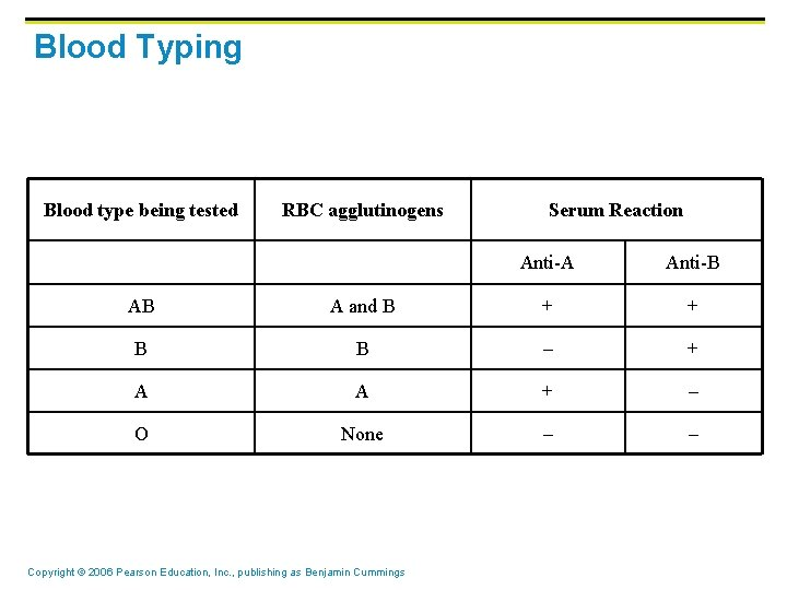 Blood Typing Blood type being tested RBC agglutinogens Serum Reaction Anti-A Anti-B AB A