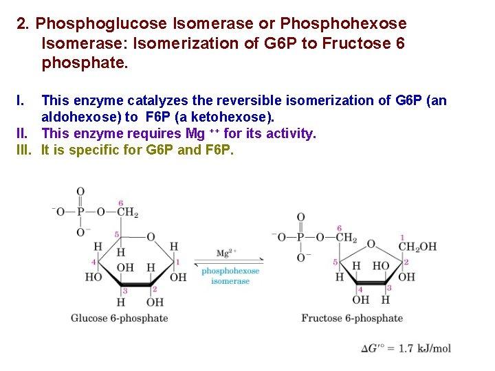 2. Phosphoglucose Isomerase or Phosphohexose Isomerase: Isomerization of G 6 P to Fructose 6