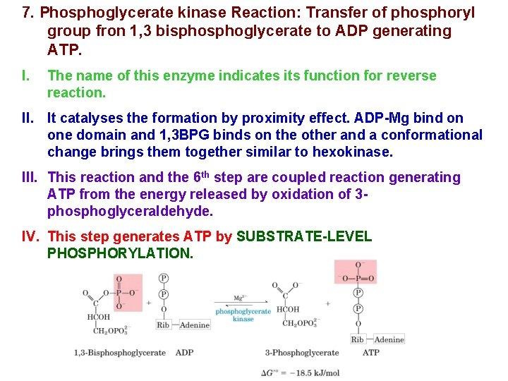 7. Phosphoglycerate kinase Reaction: Transfer of phosphoryl group fron 1, 3 bisphoglycerate to ADP