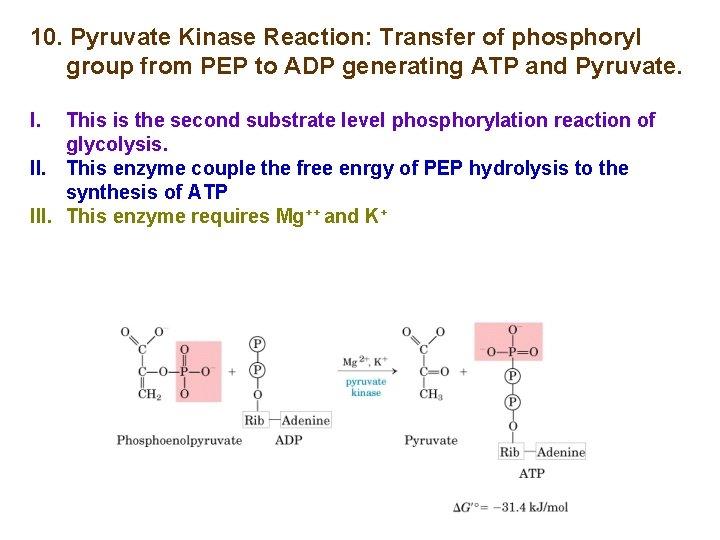 10. Pyruvate Kinase Reaction: Transfer of phosphoryl group from PEP to ADP generating ATP