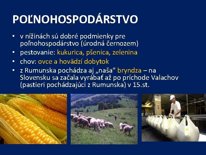 POĽNOHOSPODÁRSTVO • v nížinách sú dobré podmienky pre poľnohospodárstvo (úrodná černozem) • pestovanie: kukurica,