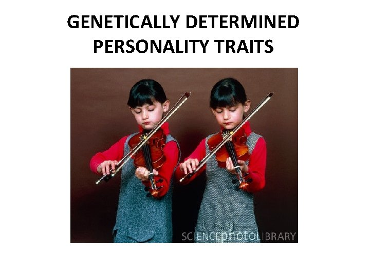 GENETICALLY DETERMINED PERSONALITY TRAITS