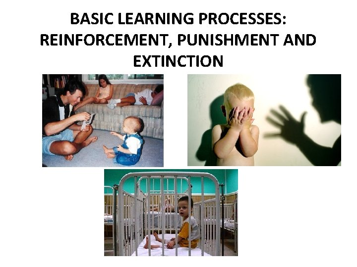 BASIC LEARNING PROCESSES: REINFORCEMENT, PUNISHMENT AND EXTINCTION