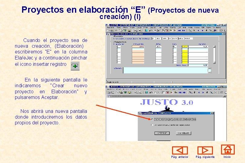 """Proyectos en elaboración """"E"""" (Proyectos de nueva creación) (I) Cuando el proyecto sea de"""