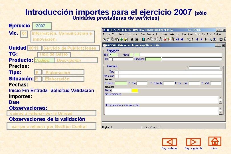 Introducción importes para el ejercicio 2007 Unidades prestadoras de servicios) (sólo Ejercicio 2007 Vic.