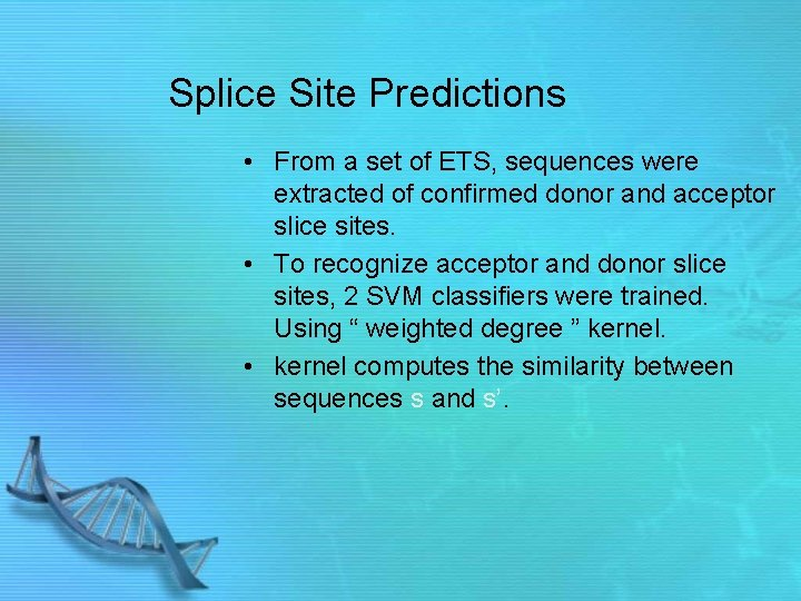 Splice Site Predictions • From a set of ETS, sequences were extracted of confirmed