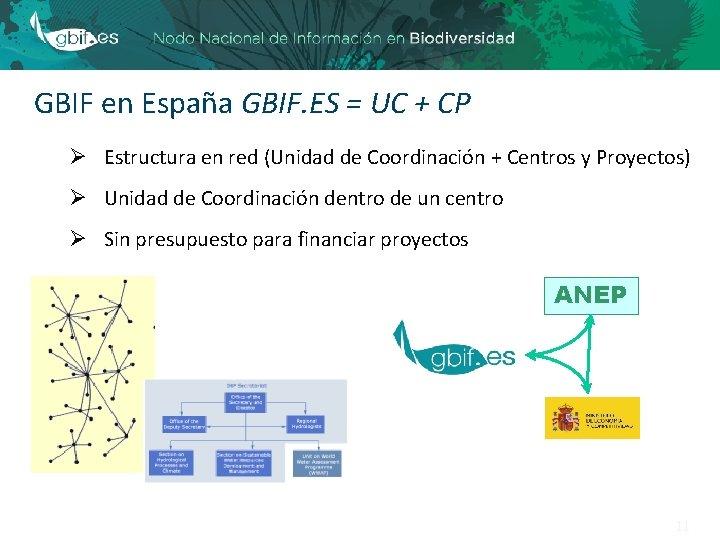 GBIF en España GBIF. ES = UC + CP Ø Estructura en red (Unidad