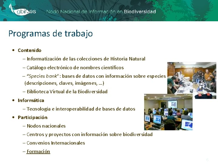 Programas de trabajo • Contenido – Informatización de las colecciones de Historia Natural –