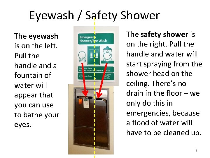Eyewash / Safety Shower The eyewash is on the left. Pull the handle and