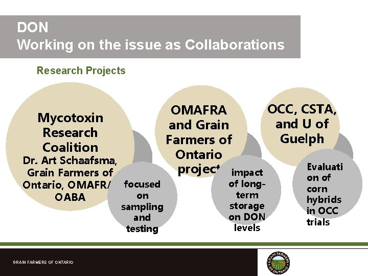 DON Working on the issue as Collaborations Research Projects Mycotoxin Research Coalition Dr. Art