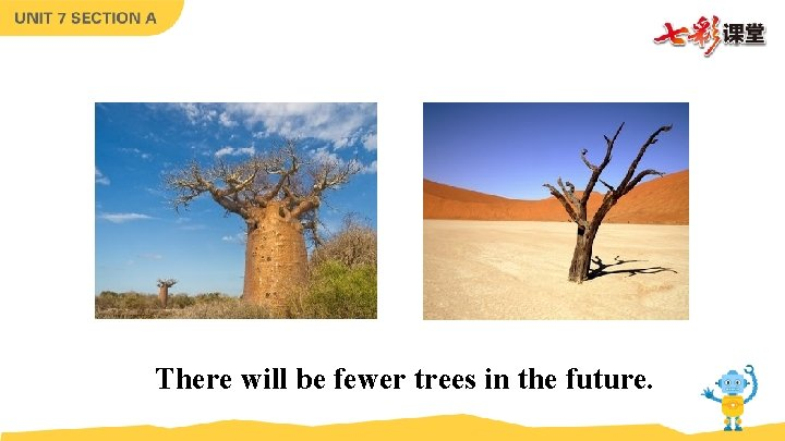 There will be fewer trees in the future.